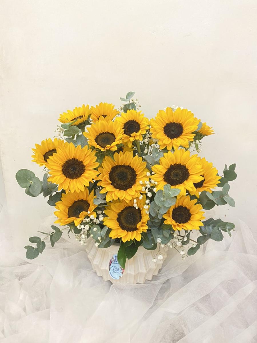 hoa-huong-duong-yen-garden-0982299988